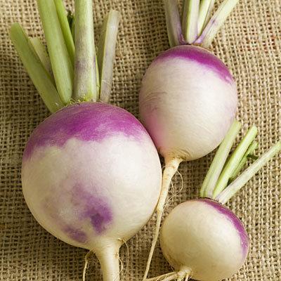 turnips-purple-top