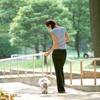 walk-dog-exercise