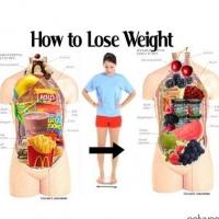 Http://weightlosswebhelpguideinfo/diet  -  plans/