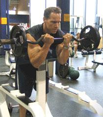 preacher-curls-big-biceps