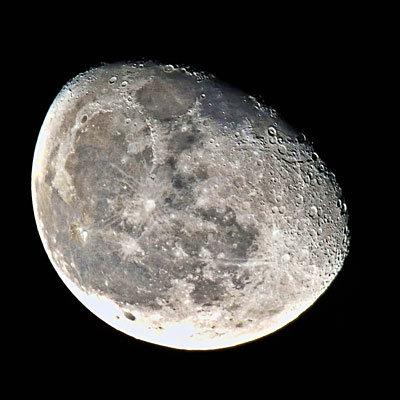 fad-moon